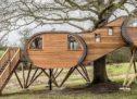 أغرب منزل سياحي بني على شجرة في العالم